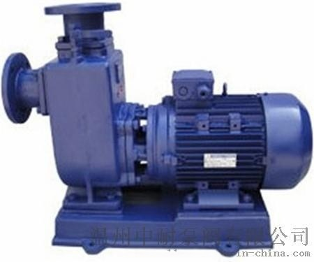 ZXL直联式铸铁自吸泵