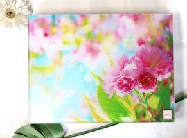 玻璃菜板pp (MDY116)
