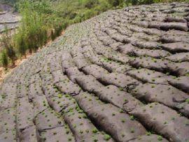丙纶生态袋,河道柔性生态护坡