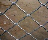 太原  門窗防盜鐵絲網廠家-山西8*8CM網格鍍鋅美格網  專賣
