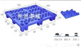 河南塑料托盘-塑料防潮垫板厂家