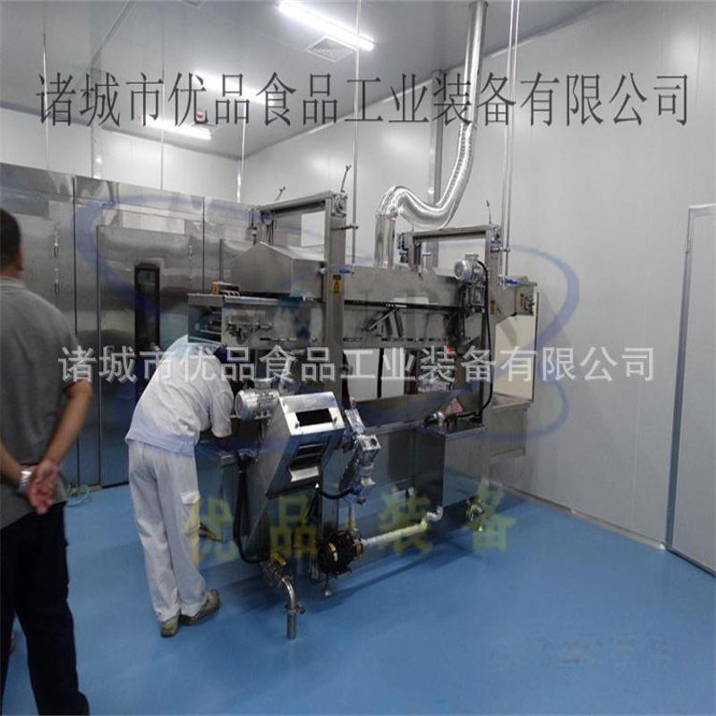 優品連續油炸機 肉製品油炸生產線 小型油炸機