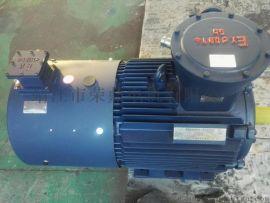 YBBP变频防爆电机/高效节能型三相异步电动机