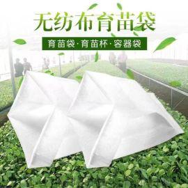 使用无纺布育苗袋能让幼苗更好生长