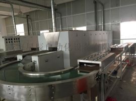 自动隧道炉 流水线式UV固化炉 烘干线