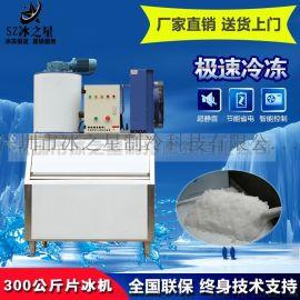 日产300公斤小型片冰机水产海鲜冷藏冰鲜制冰机
