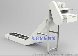 排屑机 铁屑输送机刮板输送机