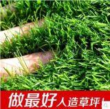 仿真草坪塑料人造草坪幼儿园假草坪阳台草坪地毯楼顶  人工草坪