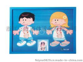 儿童墙上桌面木质益智玩具贴器官