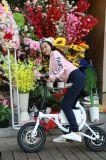 智能 电动自行车  城市代步车