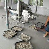 鳕鱼片挂糊机 鳕鱼片裹面包糠机 鳕鱼片上浆机厂家