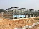 普通蔬菜大棚,钢化玻璃大棚建设,请来山东大霖温室
