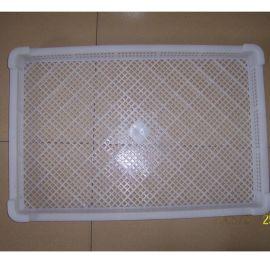 厂家批发单冻器 塑料冷冻盘 晾晒盘 水产冻盘