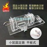 小鼠固定器 药理实验固定板 批发生产