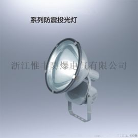 ZT6900防震投光灯