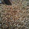 蛭石厂家批发供应新疆蛭石片2-4mm 银白色蛭石