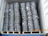 广州核电站隔离网,深圳监狱带刺护栏网安装工程