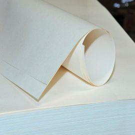 供应美国瑞典40克/50克/60克/70克高湿强白牛皮纸