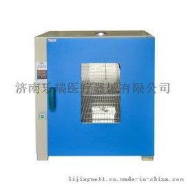 电热恒温微生物培养箱