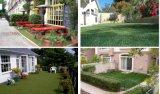 模擬草皮,米蘭草,人造草坪