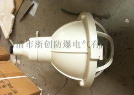 FAD-S增安型防爆防腐燈