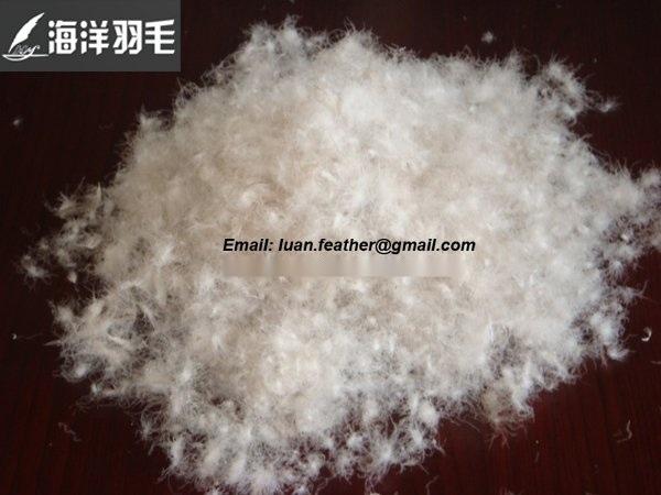 安徽羽毛羽绒厂长期大量厂价直销**白鹅白鸭羽绒、** 同等质量的价格低于同行