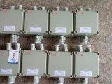 防爆接线箱 BHD52防爆接线箱/非标定做防爆接线箱厂家