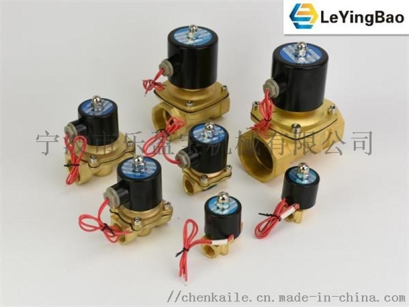 樂盈寶2W二通二位電磁閥水閥