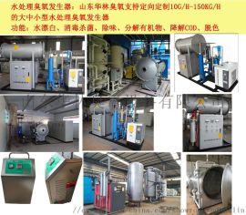 山东华林养殖臭氧发生器鸡舍消毒设备有限公司