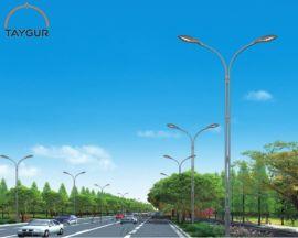 泰格LED照明,热镀锌路灯杆,9米新农村道路照明