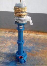 博山厂家供应销售DYWS系列立式液下泵