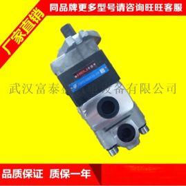 合肥长源液压齿轮泵CBHT-F314-扁左螺纹(G3/4-G1/2)