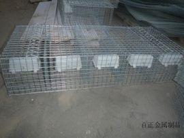 镀锌电焊网 铁丝养殖用网