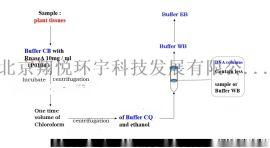 柱式CTAB法植物基因组小量/大量提取试剂盒