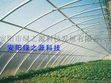 大棚扶贫政策国家提倡温室大棚建设