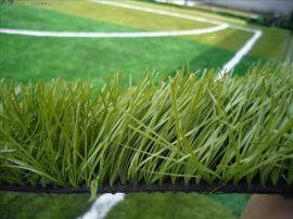 重庆学校人造草坪系列