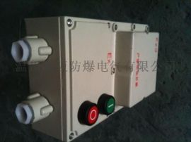油泵/搅拌机防爆磁力启动器
