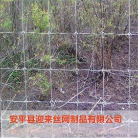 镀锌草原网 养殖牛栏网 草原网围栏