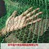 郑州盖土网 河南盖土网 盖土网防尘网