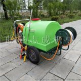 小区绿化高压打药机推车式大棚蔬菜杀虫喷药机