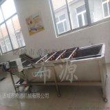 果蔬清洗机 全自动果蔬清洗机 果蔬清洗机厂家