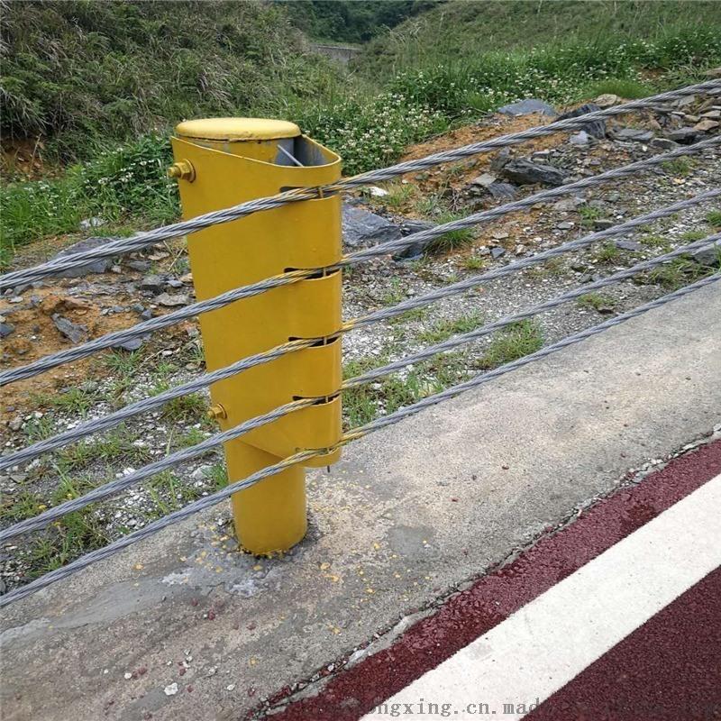 钢丝绳护栏@钢丝绳护栏厂家@景区钢丝绳索护栏