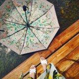 廠家批發Gucci自動收縮雨傘