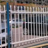 廠家專業生產鋅鋼護欄 道路護欄 草坪鋅鋼護欄