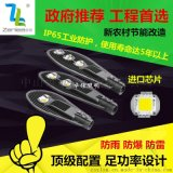 Zenlea珍領 ZL-GR1050 LED  路燈頭
