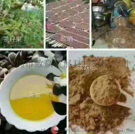 致赢直销广西巴马茶麸姜原浆冼发乳招代理商