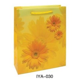 PP购物袋(030)