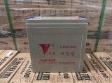 杭州天能3EVF200观光车巡逻车环卫保洁车蓄电池