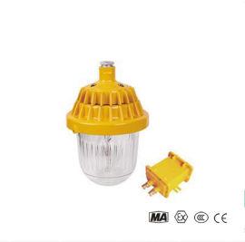 BPE8720防爆应急平台灯 抗震防爆平台灯