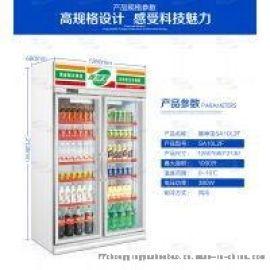 双门冷柜冰柜 啤酒饮料冷饮、冷藏展示柜风冷